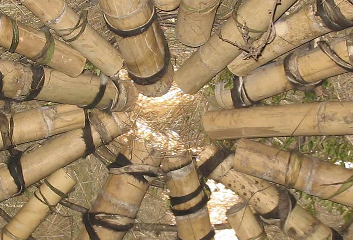 Pajky Innovacion en bambu
