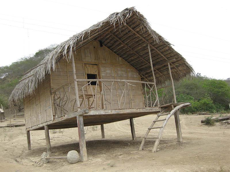 Proyecto Pajky elaboración de cabañas con bambú